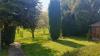 WIESBADEN ante portas  Willkommen zu Hause in Niedernhausen - Garten2